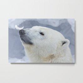 funny polar bear Metal Print