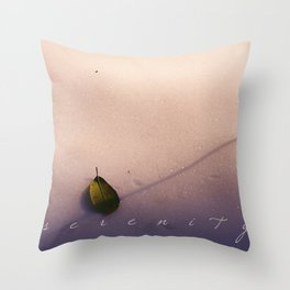 s e r e n i t y Throw Pillow