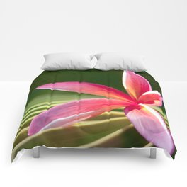 A Pure World Comforters
