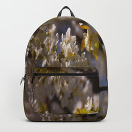 set yourself free Backpack
