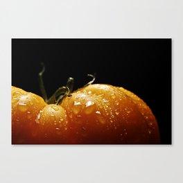 yellowed tomato Canvas Print