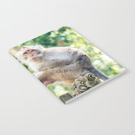 Monkey Forest | Nature Animal Photography in Bali Indonesia Notebook