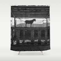 goat Shower Curtains featuring Goat by Frankpeti