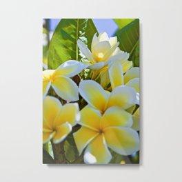Tropical Garden2 Metal Print