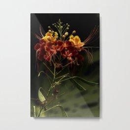 Enchantress Metal Print