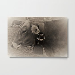 Black and White Cows in Switzerland Metal Print