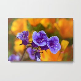 Purple Wildflowers with Gold Poppies by Reay of Light Photography Metal Print