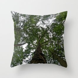 Don't Forget To Look Up Throw Pillow
