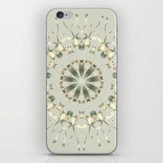 Dreemm iPhone & iPod Skin