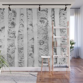 Birch Trees | Forest Landscape Photography Minimalism Wall Mural