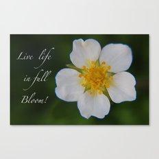 White Strawberry Flower Canvas Print