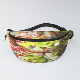 Red Butterfy Fanny Pack