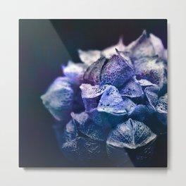 Dream Flower 5 Metal Print