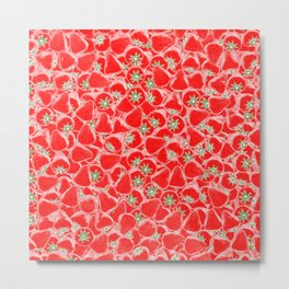 Strawberry Summer Metal Print