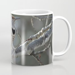 Red-shafted Northern Flicker Coffee Mug