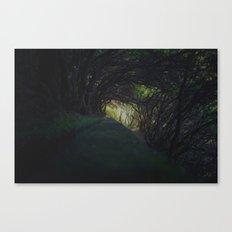 levada III. Canvas Print