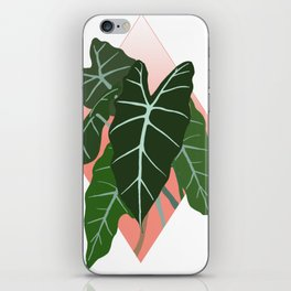 Alocaisa iPhone Skin