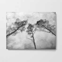 Ladies of the Woods Metal Print
