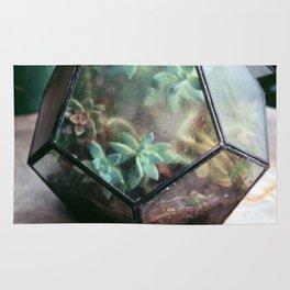 Succulent No.2 Rug