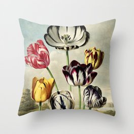 Tulips : Temple of Flora of New illustration of the sexual system of Carolus von Linnaeus Throw Pillow
