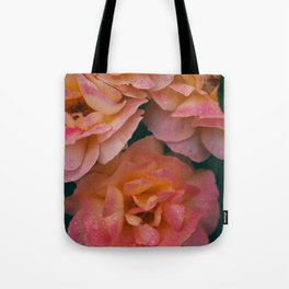 Point defiance rose garden on a rainy day Tote Bag