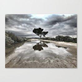 Potrero Creek Canvas Print