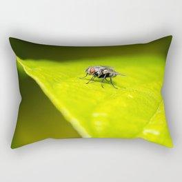 White-headed Flesh Fly Rectangular Pillow