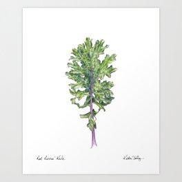 Red Russian Kale Art Print