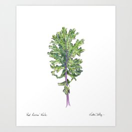 Red Russian Kale Art Print