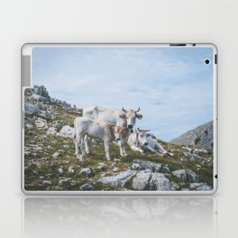 Mountain cows, Italy Laptop & iPad Skin