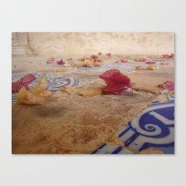 Suelo español Canvas Print