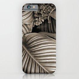 Striped Tropical Calathea Leaves iPhone Case