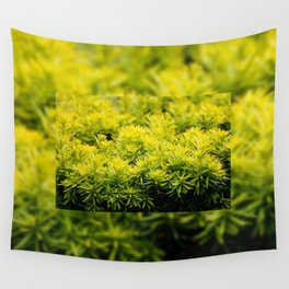 Taxus baccata Yew new shoots Wall Tapestry