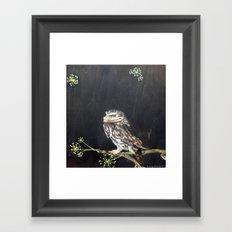 Little Owl and Ivy Framed Art Print