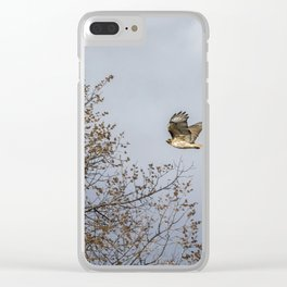 Red Tailed Hawk In Flight Clear iPhone Case