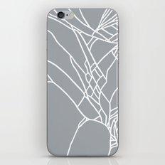 Cracked White on Grey iPhone & iPod Skin