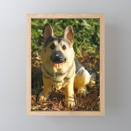 Porcelain german shepherd Framed Mini Art Print