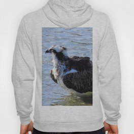 Splish Splash Hoody