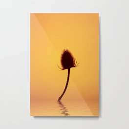 Golden Teazle Glow Metal Print