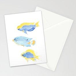 Genus Chrysiptera Stationery Cards