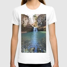Alone in Secret Hollow with the Caves, Cascades, and Critters, No. 21 of 21 T-shirt