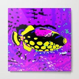 Clown Trigger Fish 2 Metal Print
