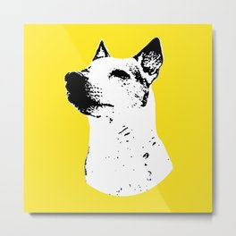 Potrait of a Jack Russell Terrior Metal Print