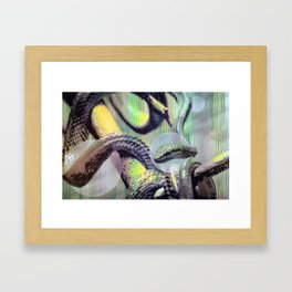 Snake on Tap Framed Art Print