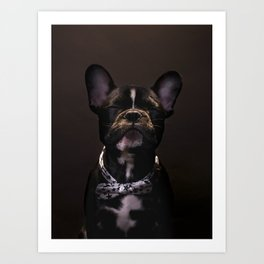 DOGS AND CULTURE COLLIDE Art Print