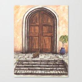 Cat and old door Canvas Print
