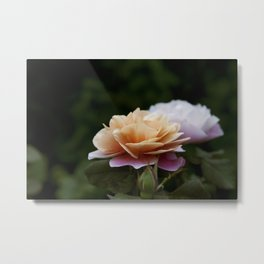 Lily Pad Rose Metal Print