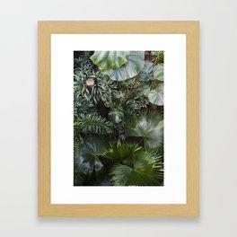 Leaves in Green Framed Art Print