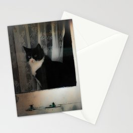 One Cat in the window Stationery Cards
