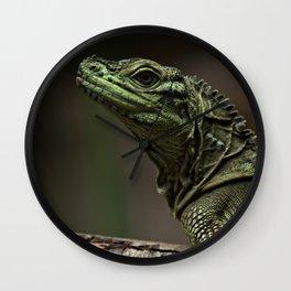 Sailfin lizard Wall Clock